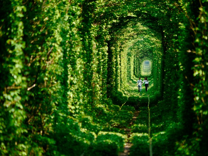 Tunnel of Love, Ukraine