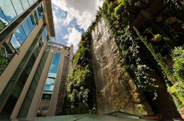 World s largest vertical garden grows on italian shopping center cat in water - Garden center madrid ...