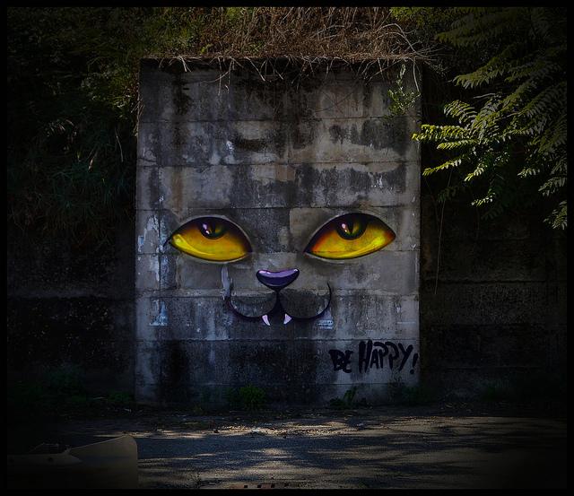 Street Art by Davi De Melo Santos 4