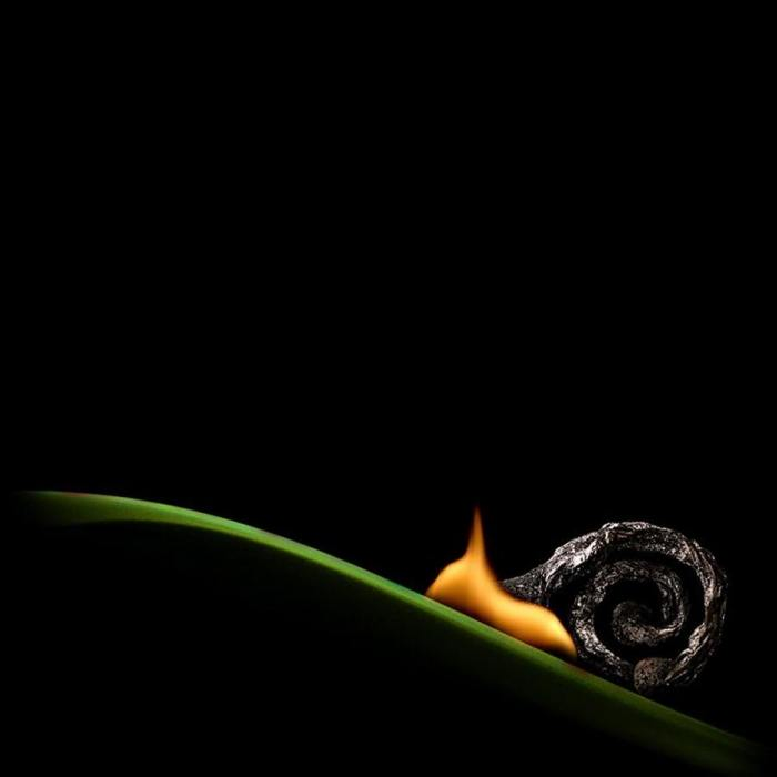 Burning-matches-by-Stanislav-Aristov-3