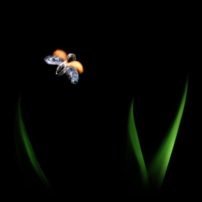 Burning-matches-by-Stanislav-Aristov-6