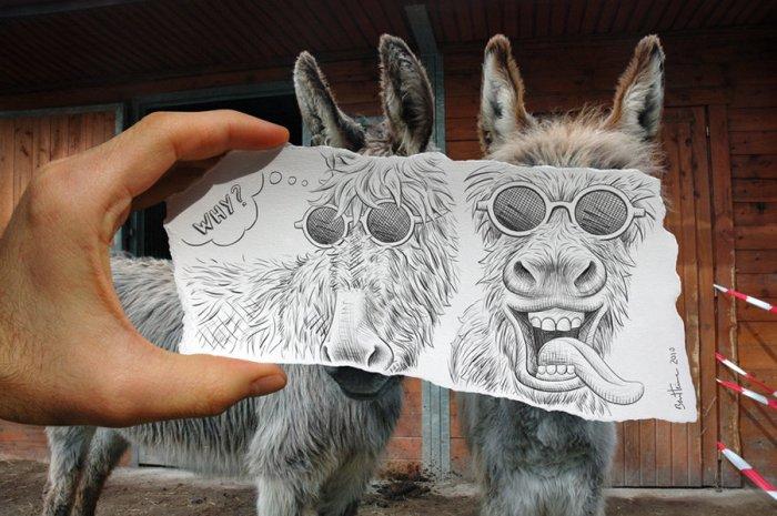 donkey-face-by-ben-heine