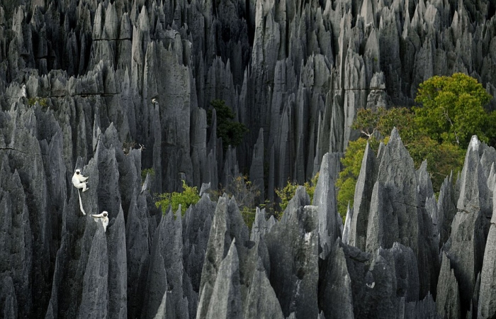 Grand-Tsingy_Madagascar-1_964x620