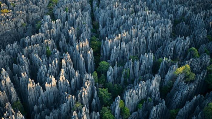 p0112ybqTsingy de Bemaraha National Park