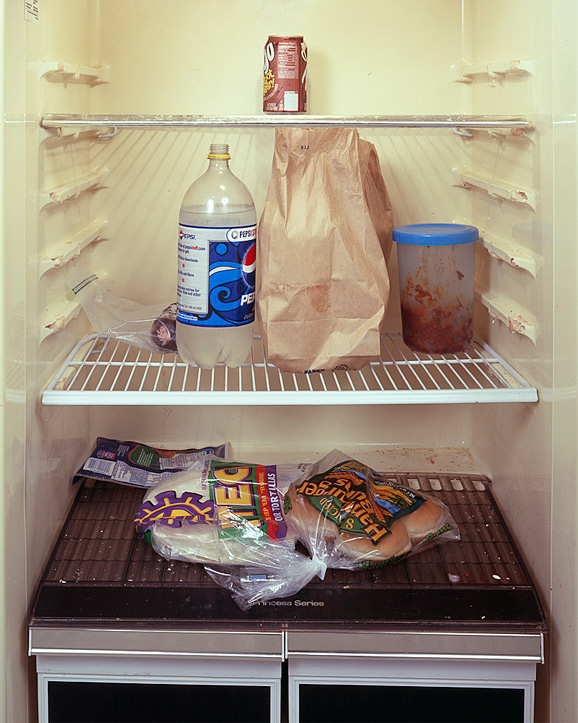 The Fridge as a Mirror of your Lifestyle 10