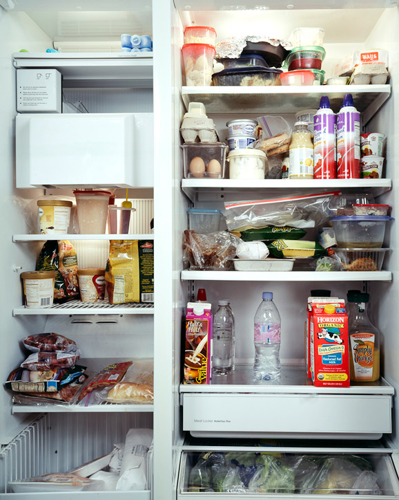 The Fridge as a Mirror of your Lifestyle 12