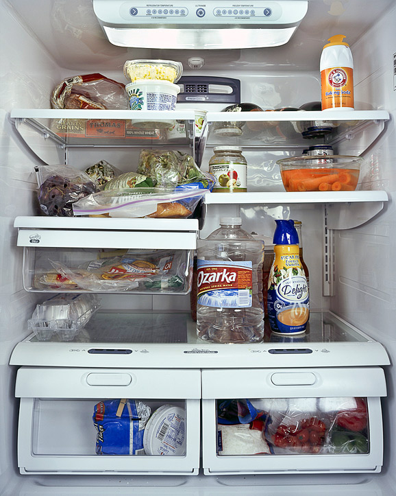 The Fridge as a Mirror of your Lifestyle 15