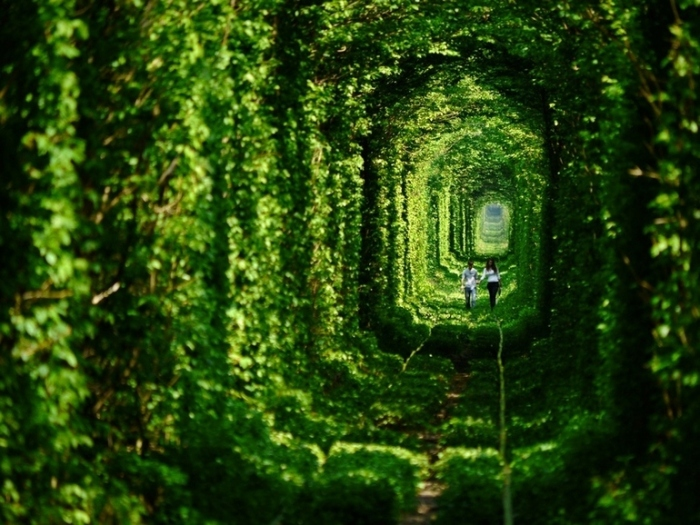The Tunnel of Love in Ukraine