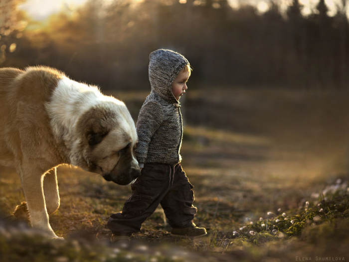 3Mother Takes Marvelous Photos of Her Children and Animals on Their Farm